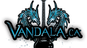 Industry Interview with Crystal Lee from Vandala Concepts