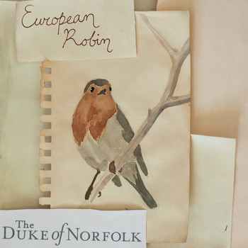 Exclusive Interview with folk artist The Duke of Norfolk